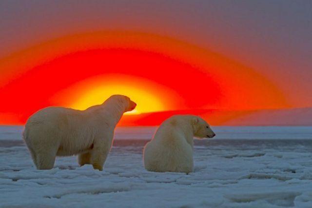 10-Alaska,-USA
