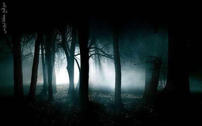 tree_nightm001