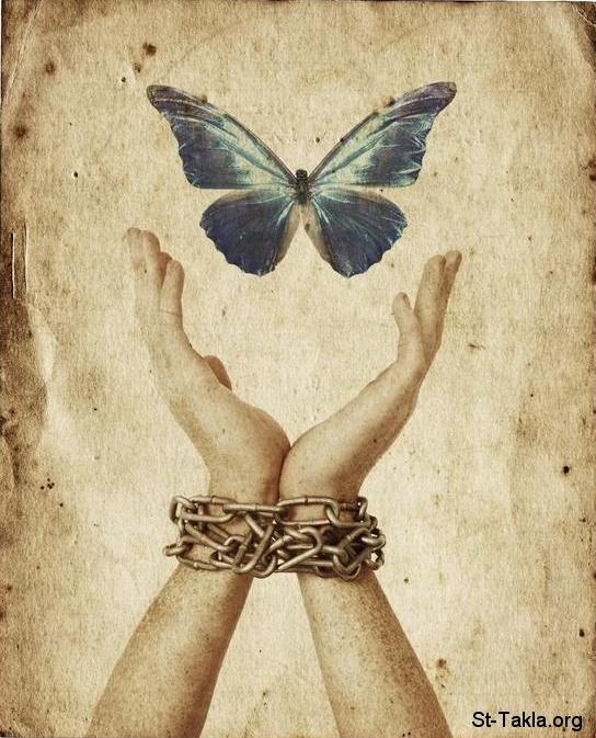 www-St-Takla-org___Freedom-Hand-Butterfly-01 (1)